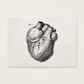 Corazones cardiacos retros de la anatomía del tarjeta de visita