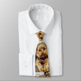 Corbata Adorable