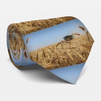 Corbata Cosechadora en campo de trigo