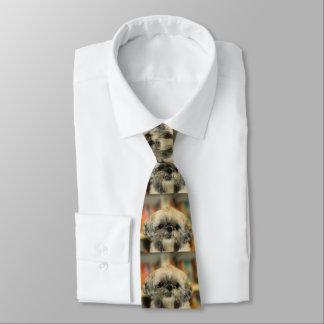 Corbata Cutie