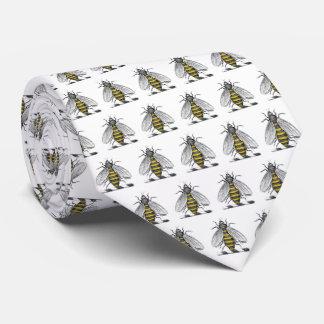Corbata Emblema heráldico de muy buen gusto C del escudo
