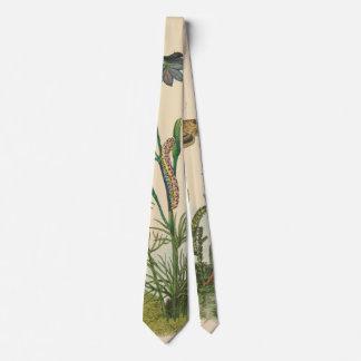 Corbata Insectos del jardín del vintage, mariposas, orugas