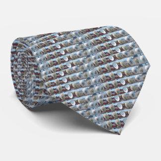 Corbata Internet impreso 2 lados de la antena de plato de