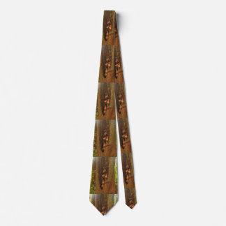 Corbata Personalizada Árbol de Portland