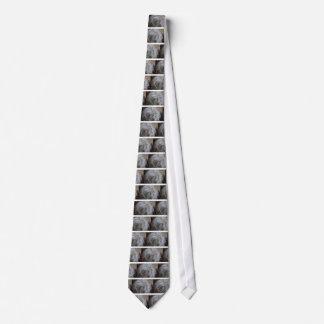 Corbata Personalizada Cactus del viejo hombre