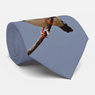 Corbata Personalizada Lazo del pinzón de cebra