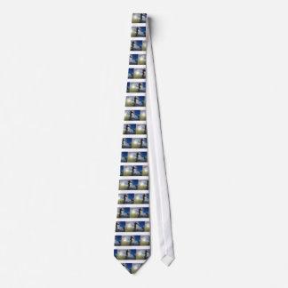 Corbata Personalizada Levántese el tablero de paleta que practica surf