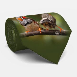 Corbata Personalizada Un par fresco de pinzones de cebra