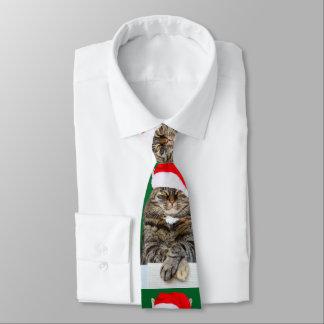 Corbatas Foto del embaucamiento del gato del navidad con el