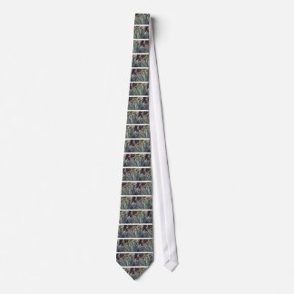 Corbatas Puntos del agavo