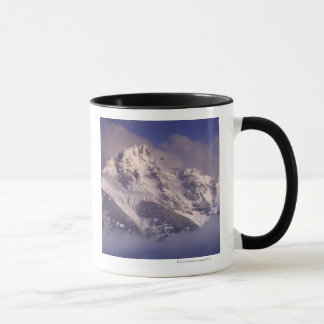 Cordillera de Denali, Alaska Taza
