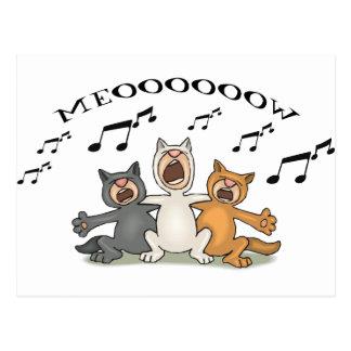 Coro del gato tarjeta postal