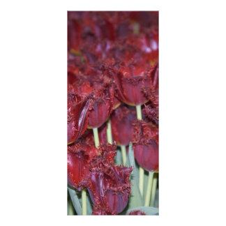 Corra a través de los tulipanes lona publicitaria
