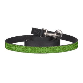 Correa de perro verde del caleidoscopio    que va