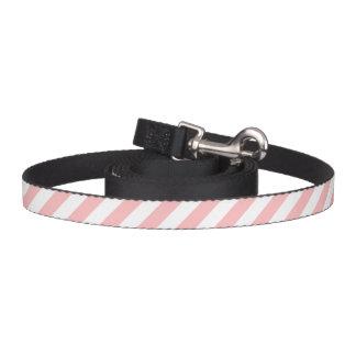 Correa Para Mascotas Modelo diagonal del rosa y blanco de las rayas