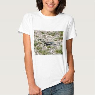 Correcaminos de la escena 09 del desierto de camisas