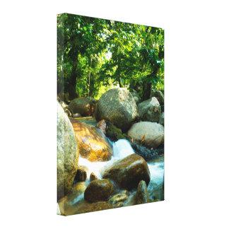 Corriente fresca en una selva tropical tropical lienzo envuelto para galerías