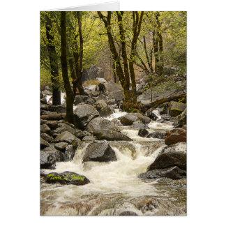 Corriente que fluye - parque nacional de Yosemite Tarjeta De Felicitación