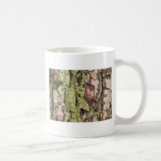 Corteza de árbol de pino de la costa este mojada taza de café