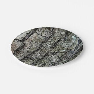 Corteza vieja del pino plato de papel