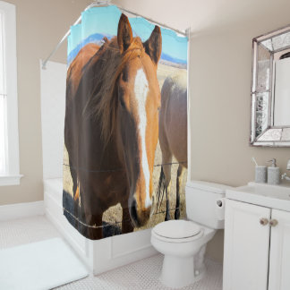 Cortina de ducha del caballo
