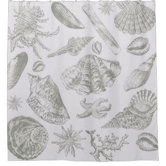 Cortina De Ducha Modelo gris de la impresión del arte del Seashell