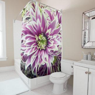 Cortina de ducha púrpura bonita de la primavera de