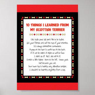 Cosas divertidas I aprendido de mi Terrier escocés Póster
