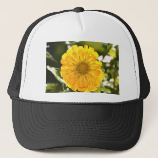 Cosmo amarillo gorra de camionero