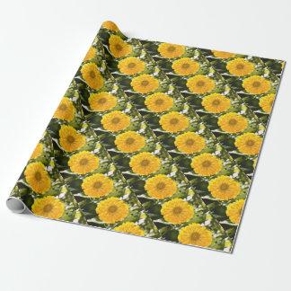 Cosmo amarillo papel de regalo