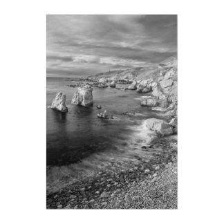 Costa costa de la playa de B&W, California Impresión Acrílica