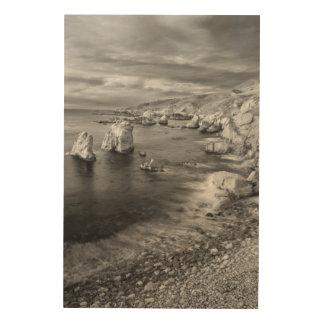 Costa costa de la playa de B&W, California Impresión En Madera