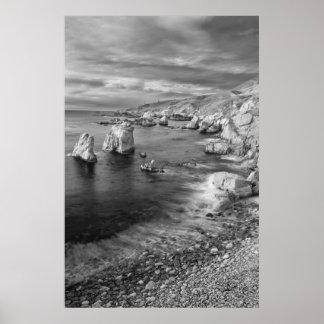 Costa costa de la playa de B&W, California Póster