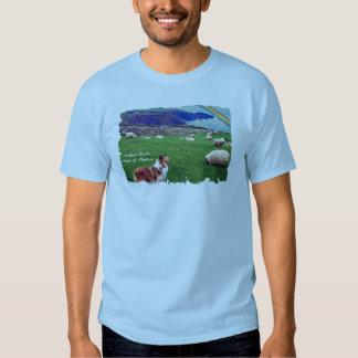 Costa impresionante de Irlanda con el collie y las Camisetas