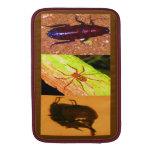 Costa Rica salvaje - arañas, cucarachas e insectos Fundas MacBook