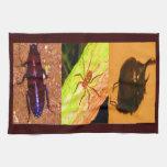 Costa Rica salvaje - arañas, cucarachas e insectos Toallas De Mano