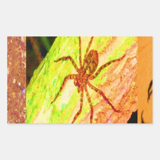 Costa Rica salvaje - arañas, cucarachas e insectos Pegatina Rectangular