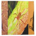 Costa Rica salvaje - arañas, cucarachas e insectos Servilleta Imprimida