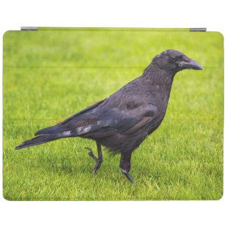 Cover De iPad Cuervo negro
