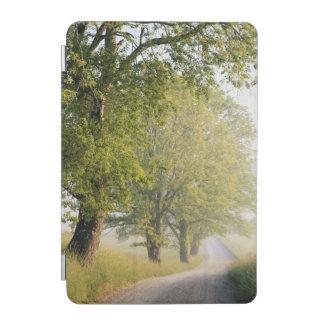 Cover De iPad Mini De Cades grandes Smokey montañas de la ensenada el