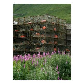 Crabpots almacenó en el puerto holandés, Alaska Postal