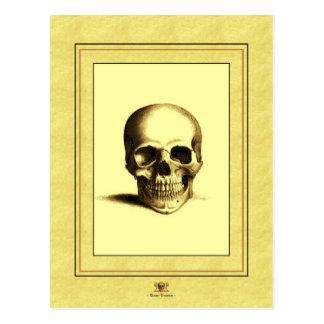 Cráneo antiguo postal