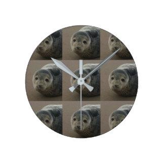 Cría de foca gris en la playa. Reloj redondo del