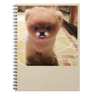 Cuaderno abucheo