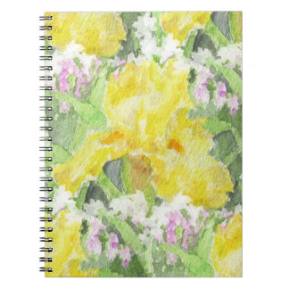 Cuaderno Acuarela alta amarilla del iris barbudo