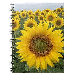Cuaderno amarillo brillante de la foto de los