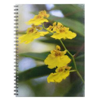 Cuaderno amarillo de las orquídeas