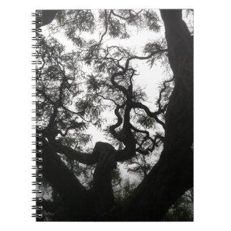 Cuaderno Árbol del ángel
