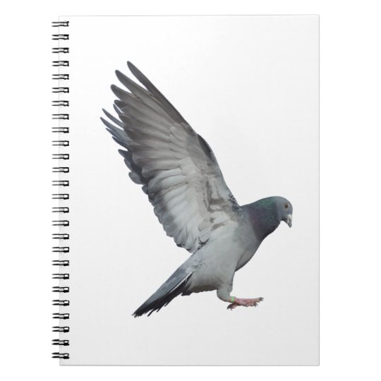Cuaderno Batiendo alas