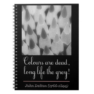 Cuaderno Colours are dead, long life the grey!